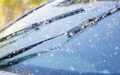 The Fascinating World of Windshield Wipers