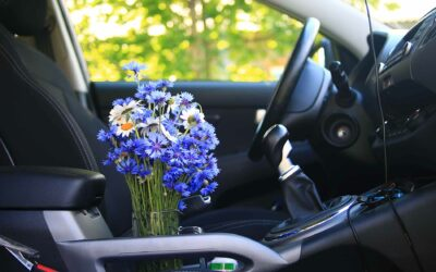 Spring Tune-Ups for Your Car